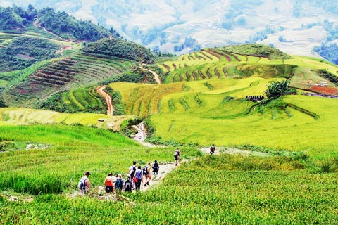 Sapa Tour: Medium trek in Ta Phin, Trung Chai and transfer by Bus